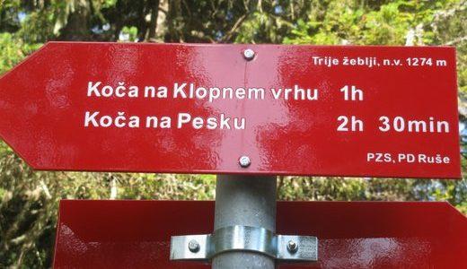 PLANINSKO DRUŠTVO PREBOLD VAS VABI NA 42. Zimski pohod po poteh Pohorskega bataljona